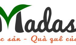 Giới thiệu về Madasa